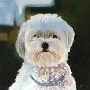 Tête de chien, peinture à l'huile